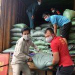 Các đơn vị vận chuyển số gạo được Khatoco hỗ trợ về địa phương.